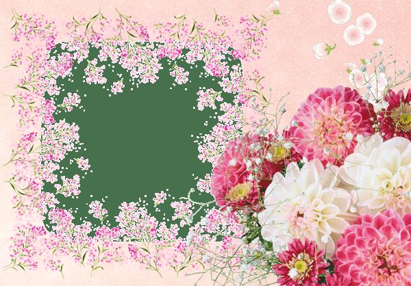 flores para fotos