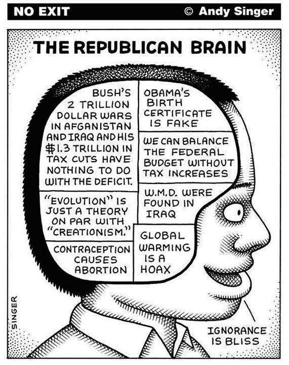 The Last Word On <b>Conservative</b> Brain Structure