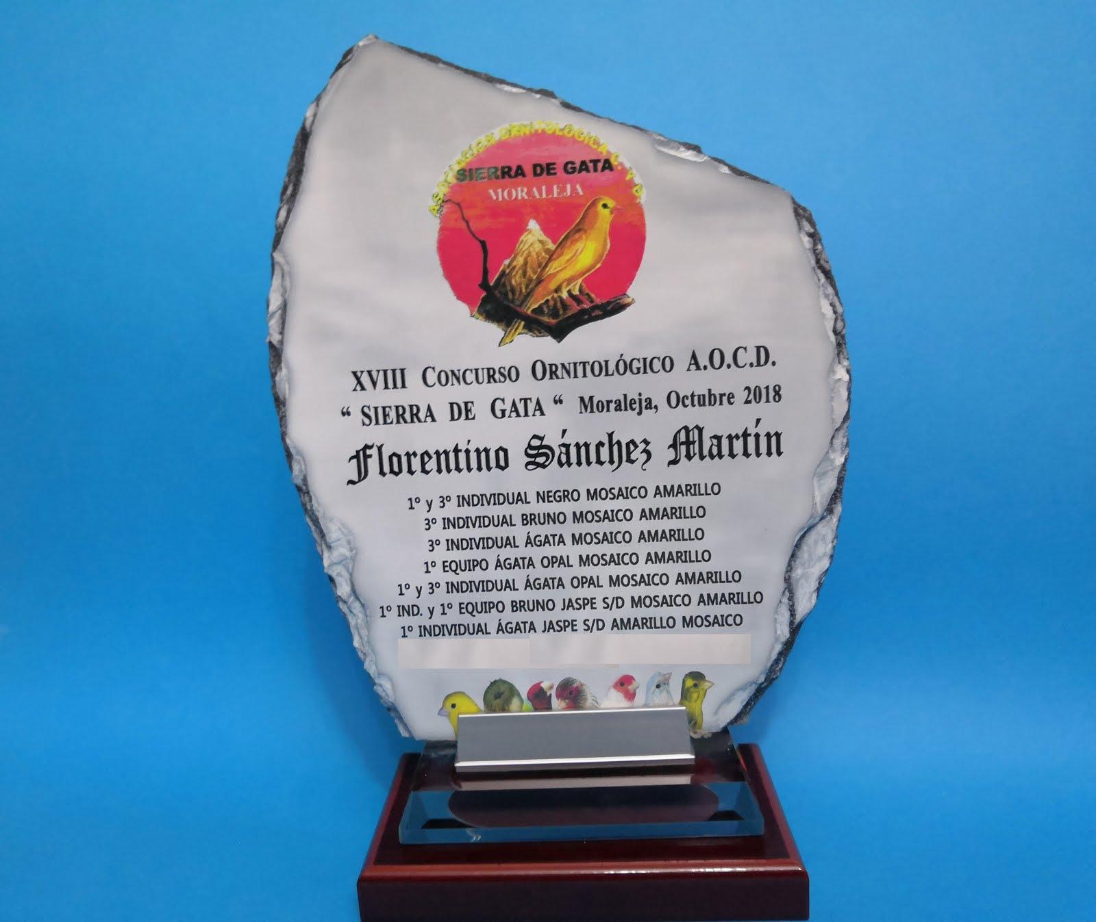 XVIII Concurso Ornitológico Sierra de Gata (Moraleja) 2018