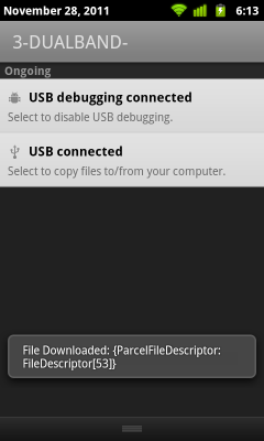 Download using DownloadManager