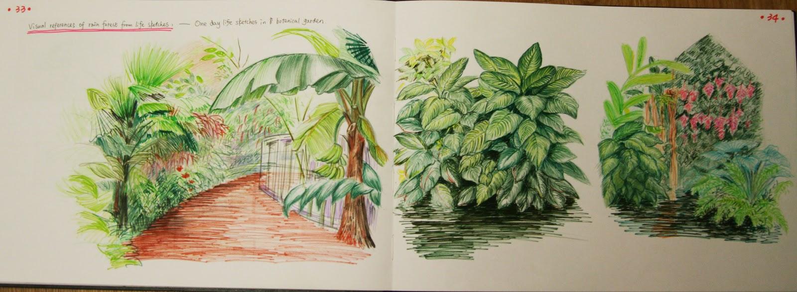 Illustration Design Sketching Tropical Plants In Botanical Garden
