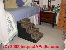 camas altas e cães