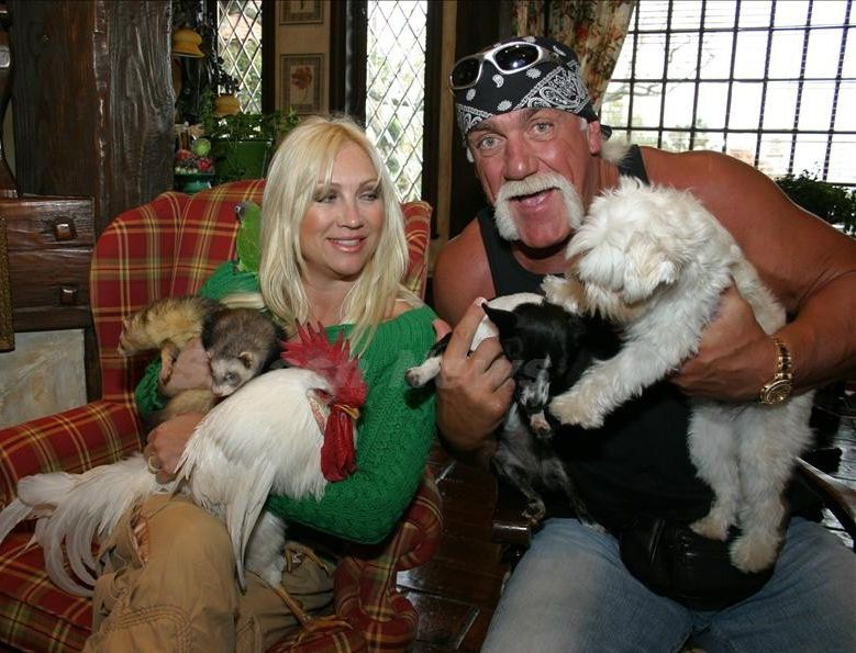 hollywood celebrities hulk hogan amp wrestling