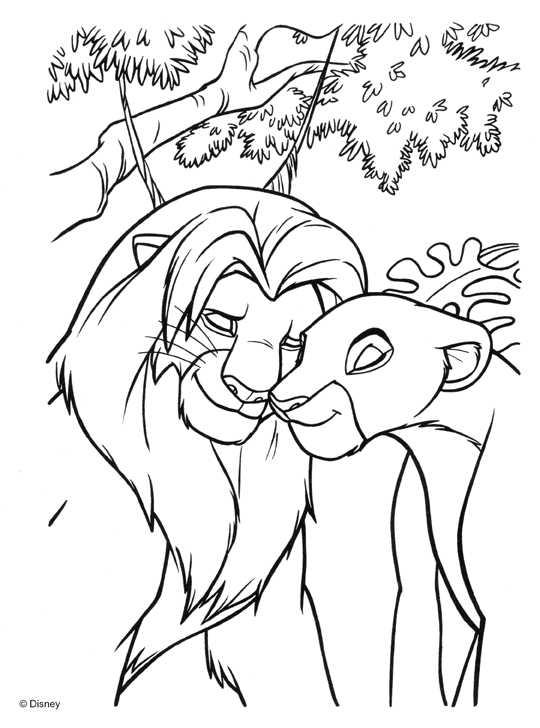 Desenhos Preto e Branco Familia Rei leão Colorir
