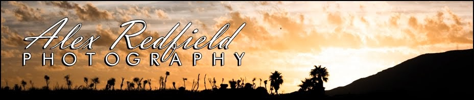 Alex Redfield Photography