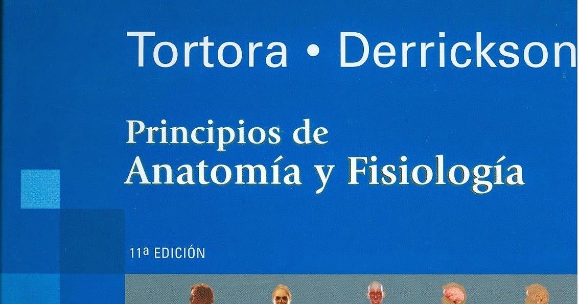 Increíble Anatomía Y Fisiología Gerard Tortora Bosquejo - Anatomía ...