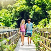 Travel Companion Websites