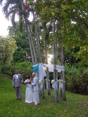 Palm Tree Wedding Arch
