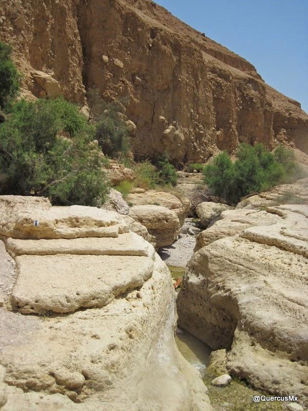 Pequeños cañónes en Wadi Arugot