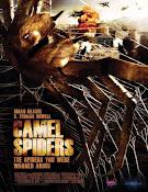 Arañas del desierto (2011)