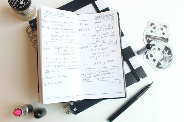 How to Skin Journal