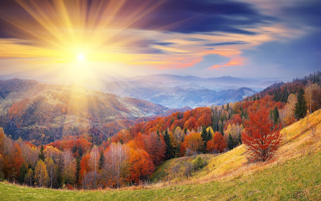 Autumn Nature Sunrise