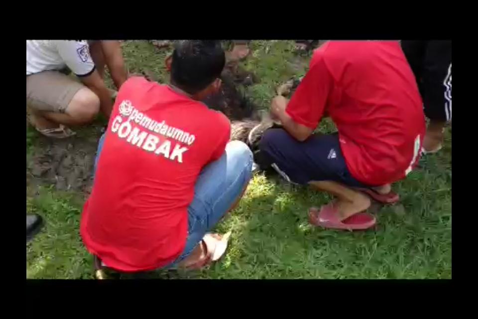 GOMBAK!!! GEMPUR!!!: VIDEO: ANGKARA PAS, ORANG MUDA SG