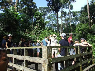 Borneo Kota Kinabalu & Sandakan Trip