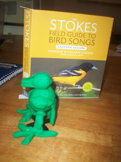 Stokes Bird Songs