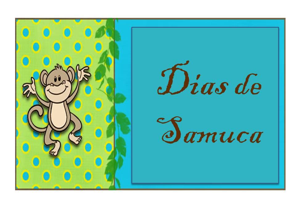 Dias de Samuca