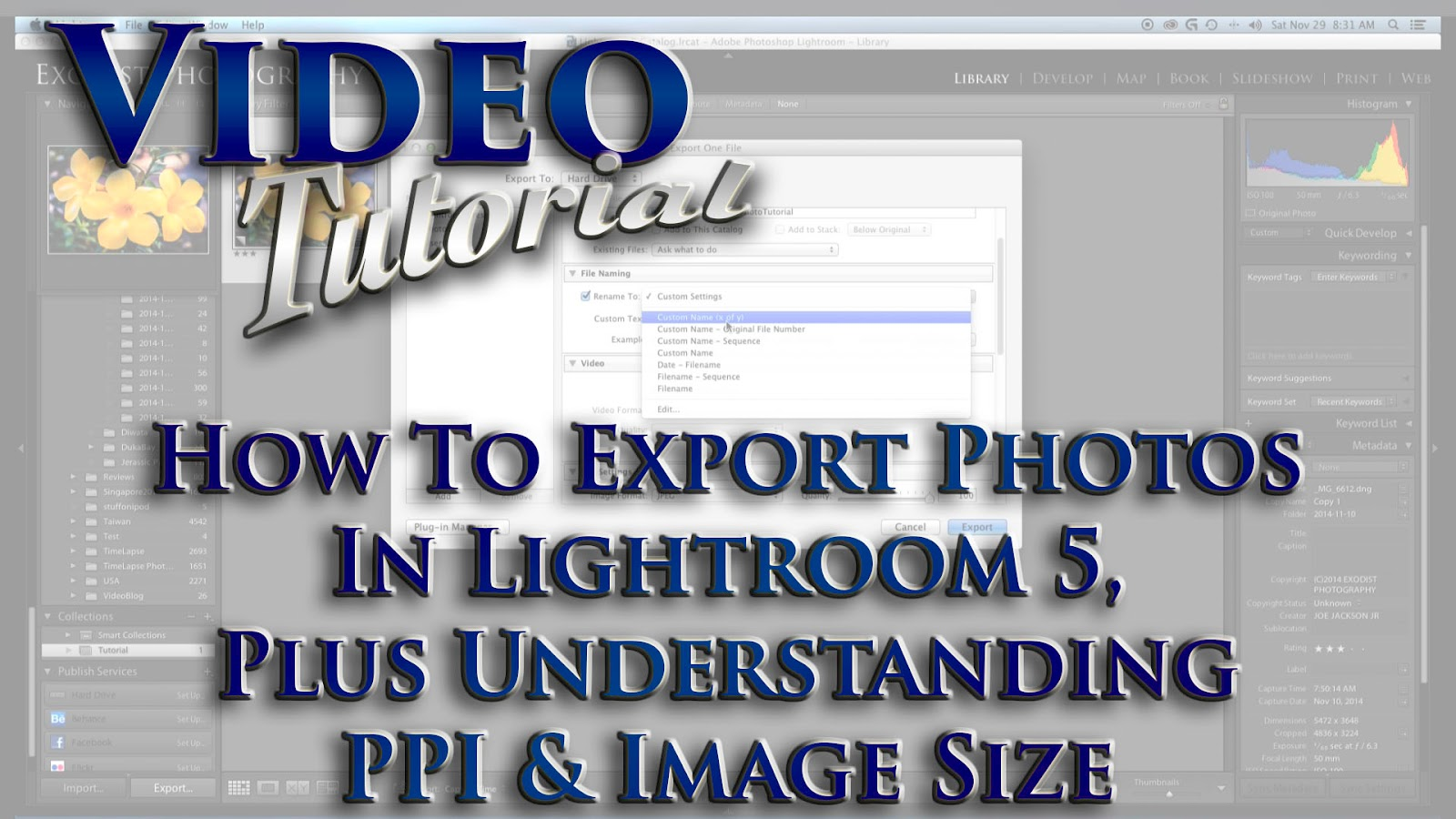 Learn How To Export Photos In Lightroom 5, Plus Understanding PPI & Image Size