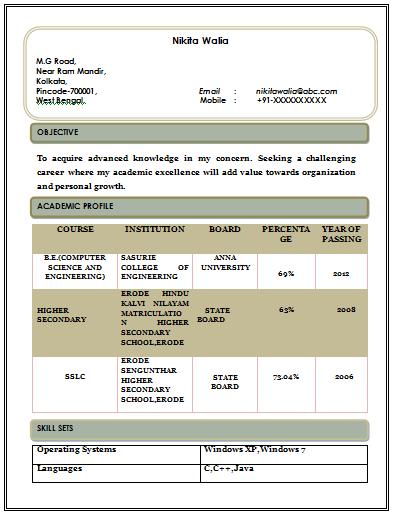 Free Download Beautiful U0026 Professional Resume Format