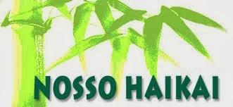 REVISTA BRASILEIRA DE HAICAI