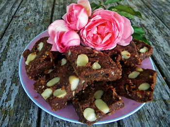 Raw Energy Pecan Slice