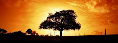 Magnifique Couverture Facebook Nature Lever de Soleil