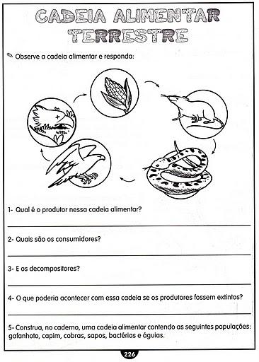 Animais   Cadeia Alimentar   Teia Alimentar