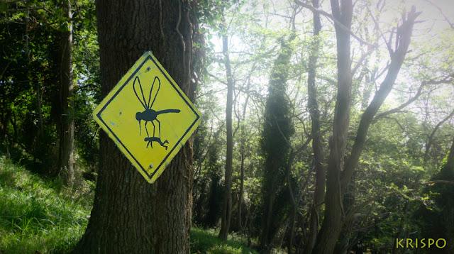 bosque con cartel del planeta de los insectos