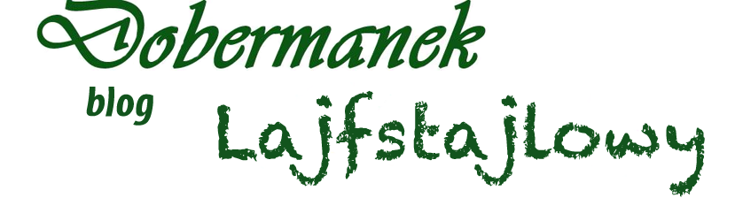 Dobermanek - Blog Lajfstajlowy