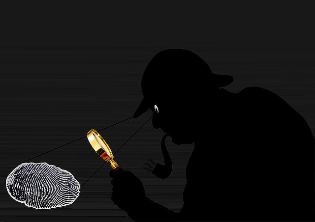 jasa detektif di bali