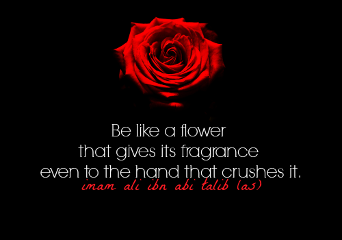 Be like a flower that gives its fragrance even to the hand that crushes it.