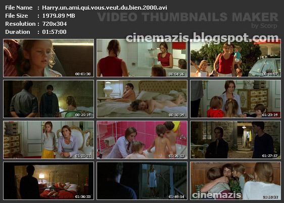 Harry, un ami qui vous veut du bien (2000) Dominik Moll