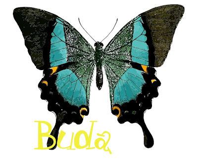Borboleta de Buda