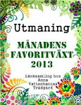Utmaning hos Anna Vattenkanna