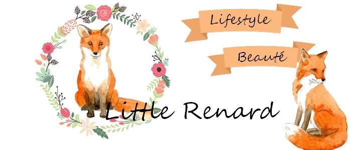 Little renard
