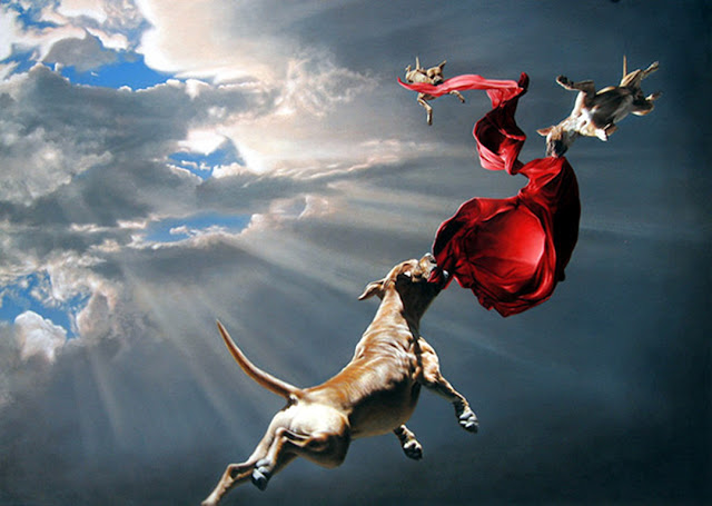 flying dog in air wallpaper