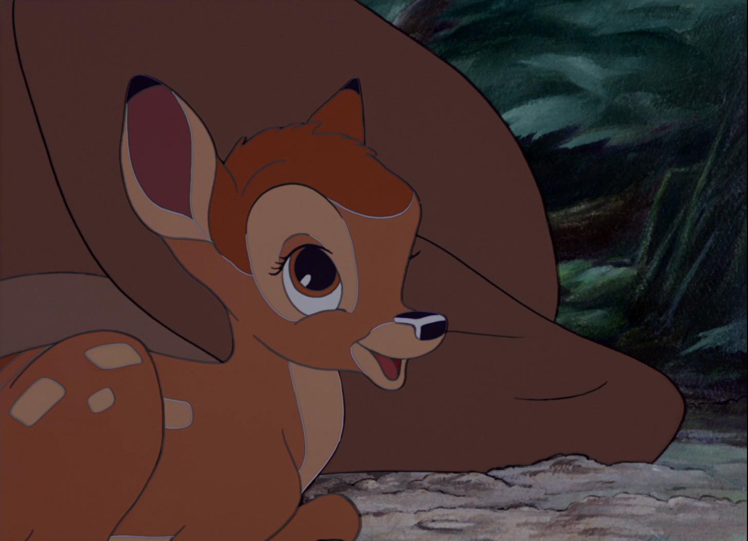 Bambi baby discount coupons