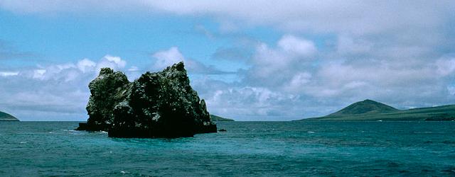 Selvas Submarinas