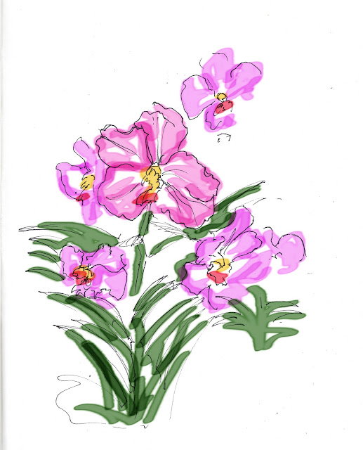 orchid botanic gardens