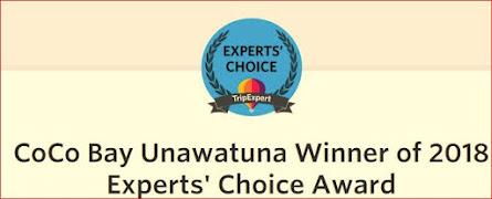 Experts' Choice Award