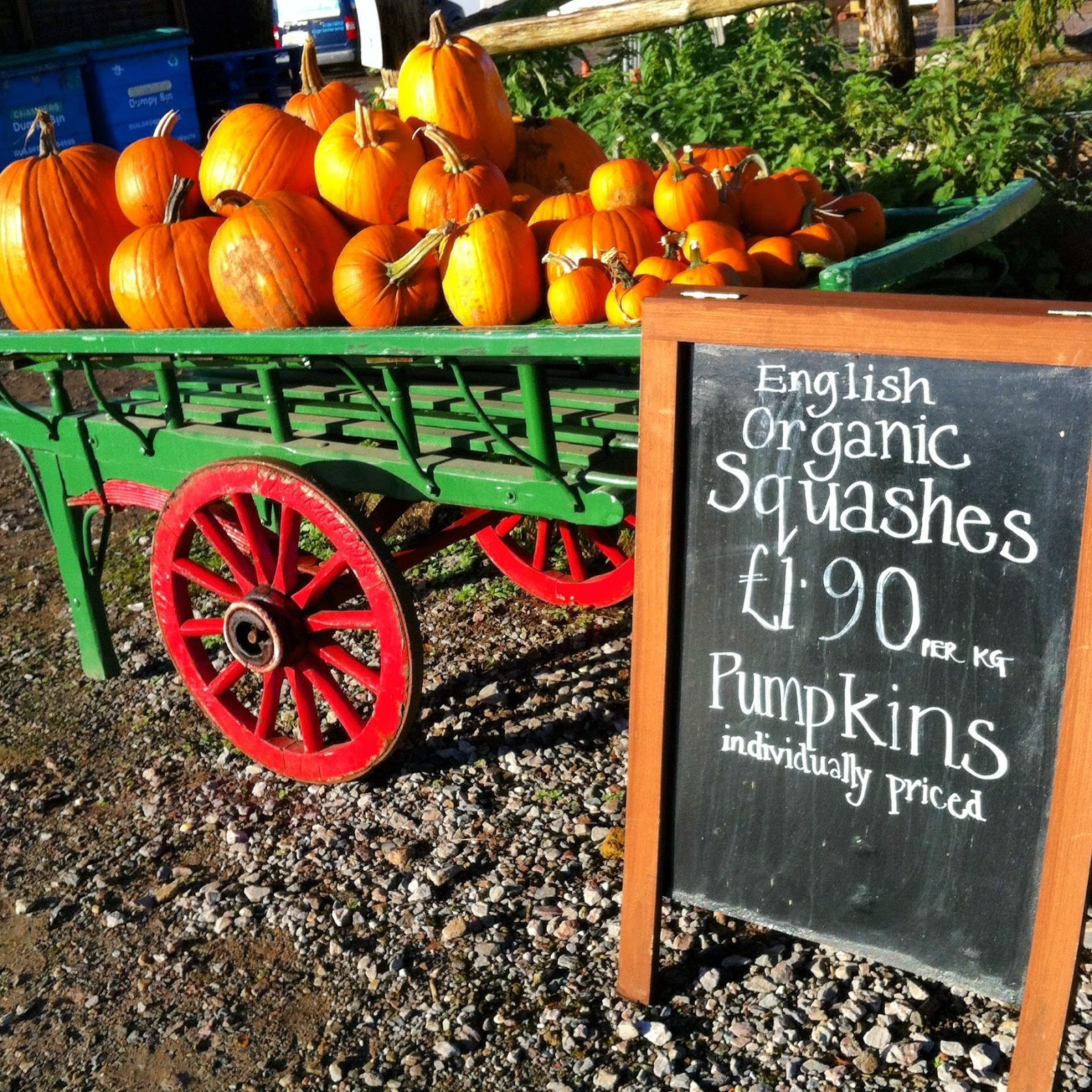 Pumpkins, Surrey, Farm Shop
