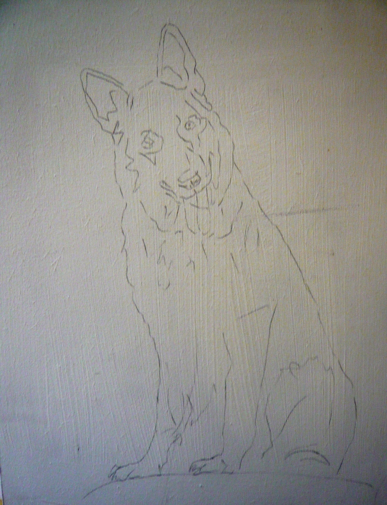 drawing of German Shepherd, first stage of a pet painting by Karen