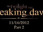 THE TWILIGHT SAGA BREAKING DAWN PART 2.jpg