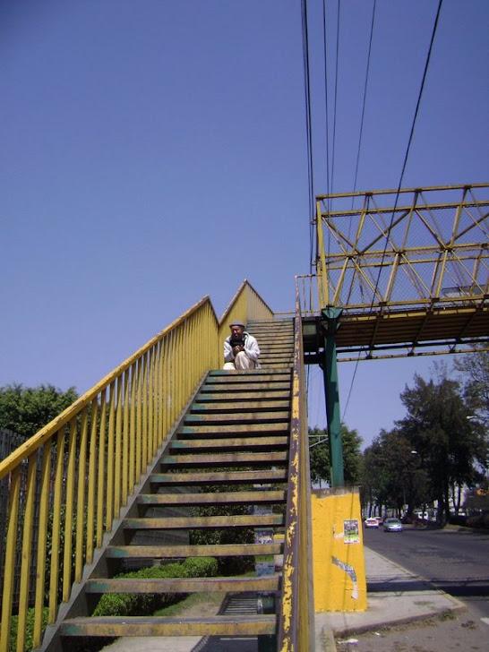 ROBERTO DE LAMA