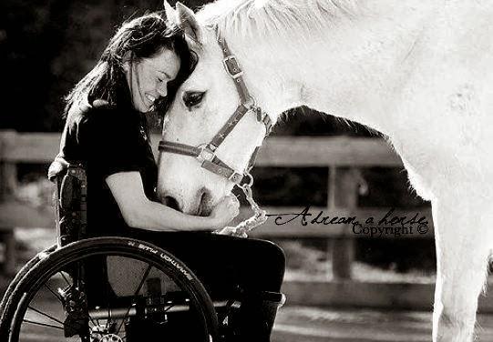 cadeirante e cavalo