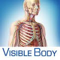 VisibleBody 3D anatomy atlas