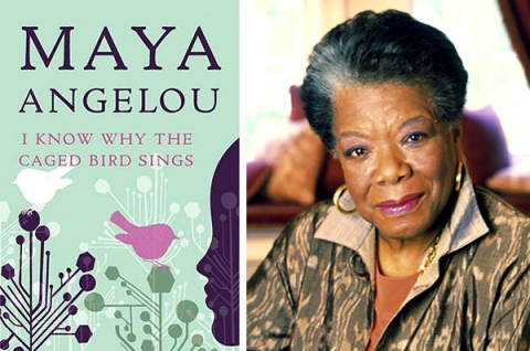 why the caged bird sings essay