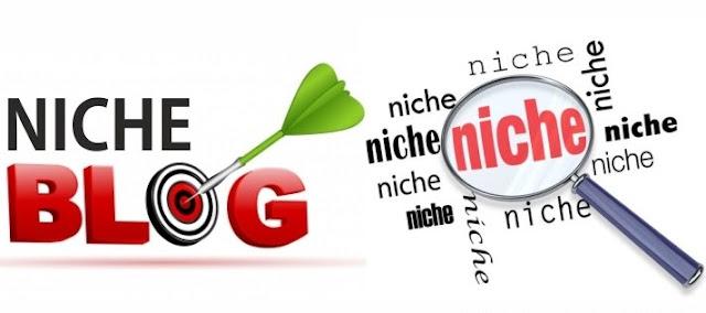 Apa Itu Niche Blog Dan Kegunaanya