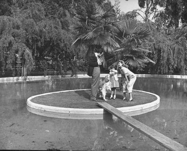 Crazy shape swimming pools modern design by for Knebel design pool ug