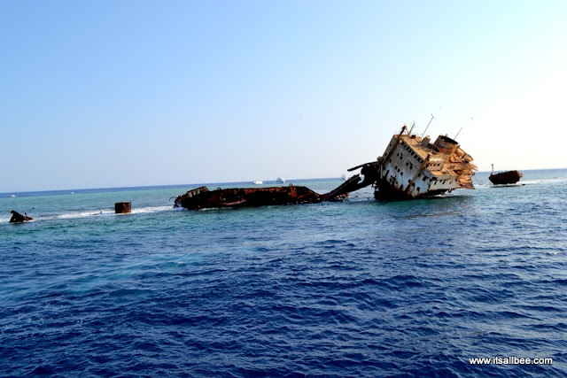 The Red Sea: Dive in to a magical world -Tiran Island Sharm El Sheik