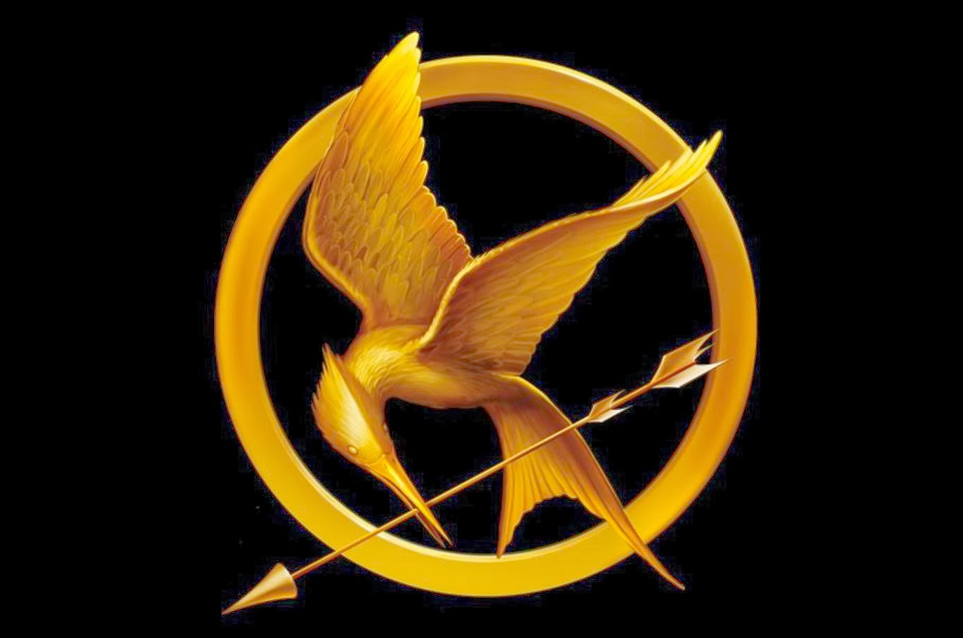 Pin Mockingjay-pin-on-fire-with-white-background-image ...